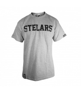 Camiseta Basic Gris - Stelars